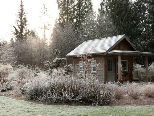 Make The Most Of Your Winter Garden