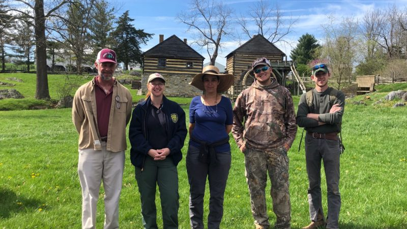 Tree Risk Assessment At McCormick Farm